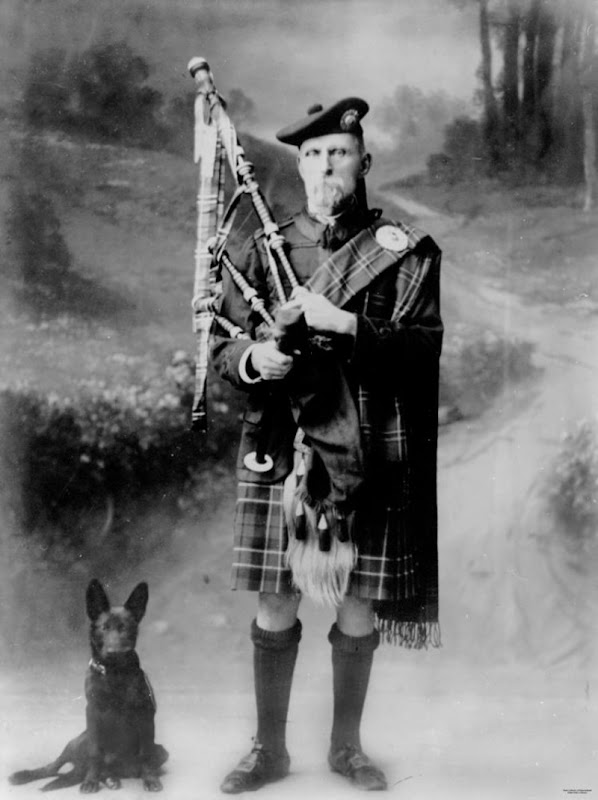 Dog and bagpiper, Bowen, 1921. Studio portrait of a bagpiper in traditional highland dress. A dog sits to the right of the picture, 1921.