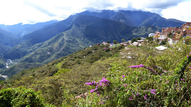Les Andes depuis Coroico (Yungas, Bolivie), 26 décembre 2014. Photo : Jan Flindt Christensen