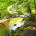 Amazing Mianus river gorge