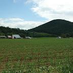 Gleaves Farm and  Knob
