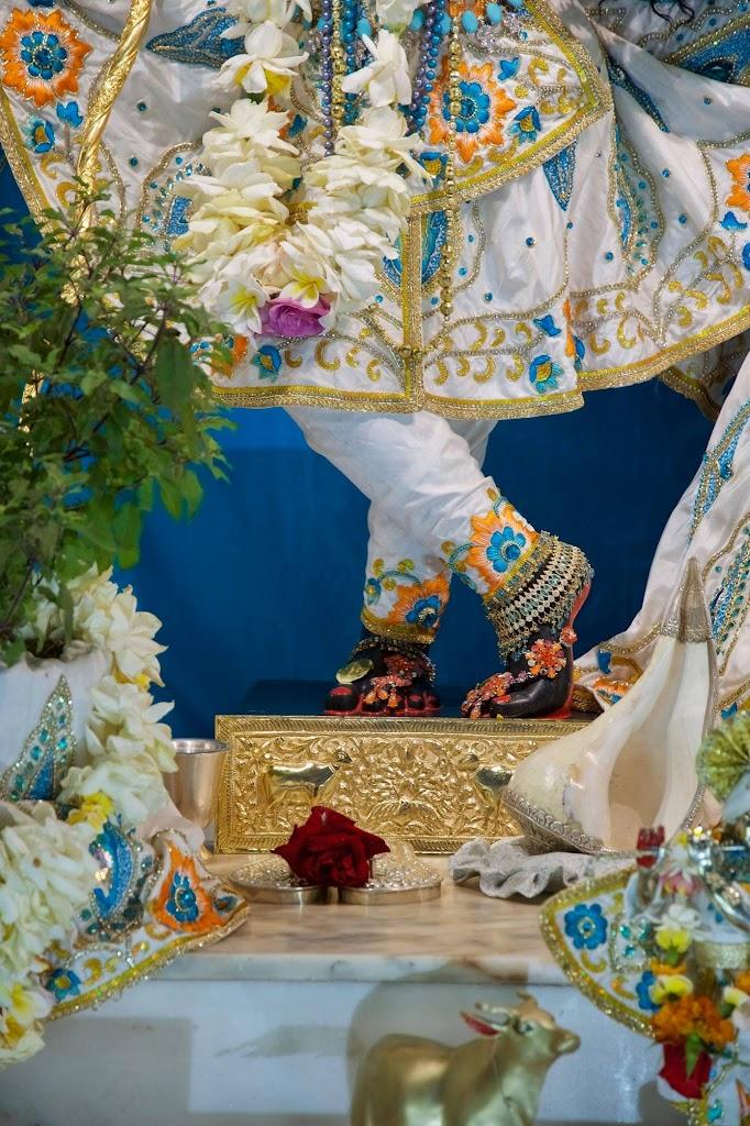 ISKCON New Govardhan Deity Darshan 08 Dec 2016 (37)