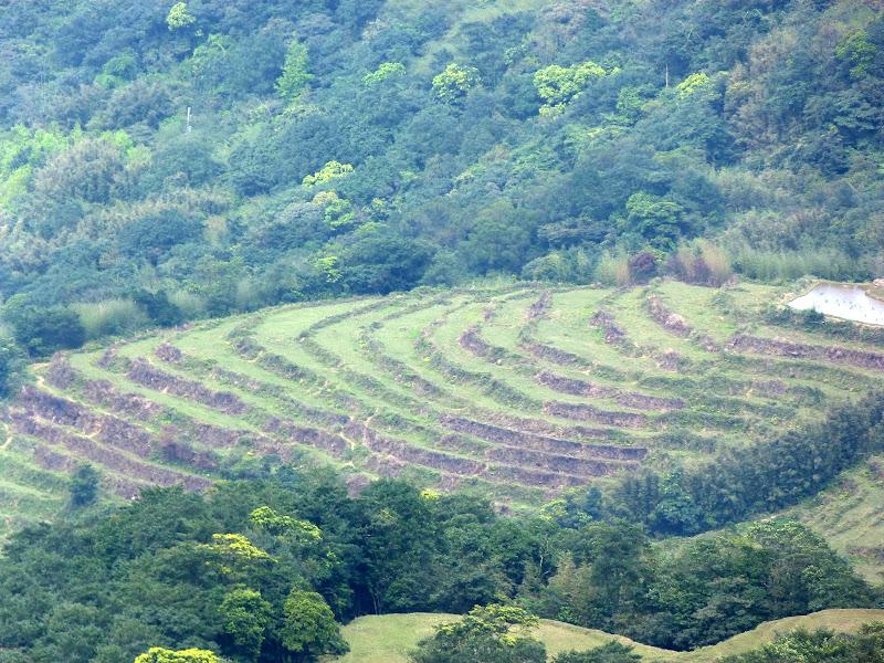 TAIWAN Daxi . Randonnée Taoyan valley - P1260049.JPG