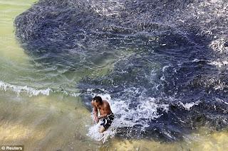 Kesan Tsunami Dan Gempa Bumi Di Jepun, utaan Ikan Menyerang Pantai Acapulco Mexico, Fenomena Tsunami, Gempa Bumi Jepun, Tsunami melanda Jepun, Ikan Menyerang Pantai Acapulco Mexico,