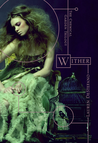 "A Conversation with Lauren DeStefano, author of ""Wither"""