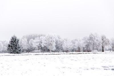 Teufelsmoor bei Frost