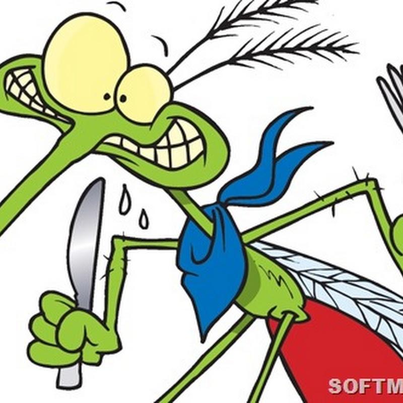 Какие люди кажутся комарам самыми вкусными