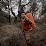 Dandy dwi sulistiyanto's profile photo