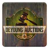 DeYoung Auctions