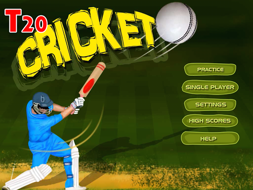 T20 Cricket Challenge