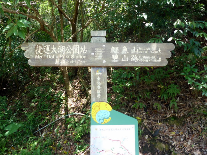 Taipei. Promenade de santé au départ de la station de métro DAHU       06/13 - P1330198.JPG
