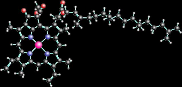 Uma qu mica irresist vel clorofila sem ela era dif cil for Que significa molecula
