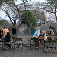 Camping in Chobe game reserve 100 meters from lions