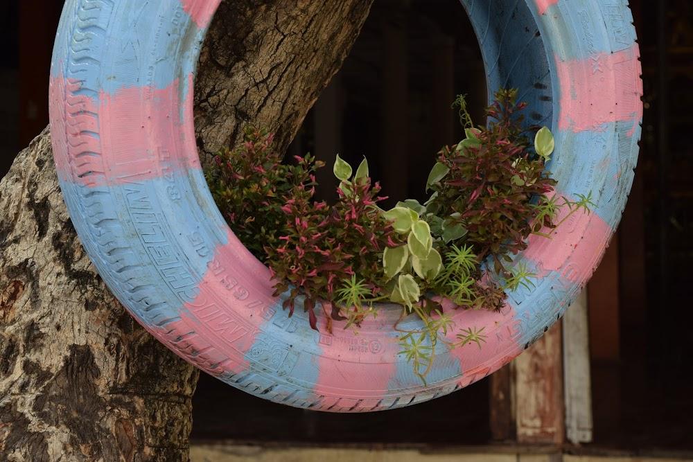 a tire flower pot at the Wat