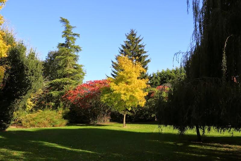 Le parc paysagé - IMG_8437.JPG