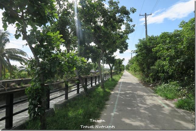 台東山海鐵馬道 台東環市自行車道 (122)