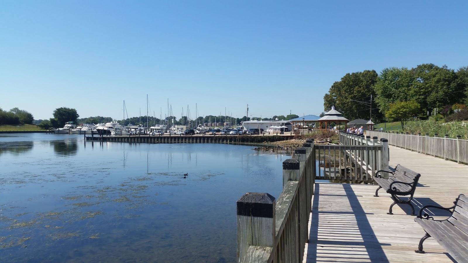 Susquehanna River Running Festival Event Image