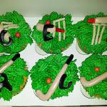 Hockey & Cricket.jpg