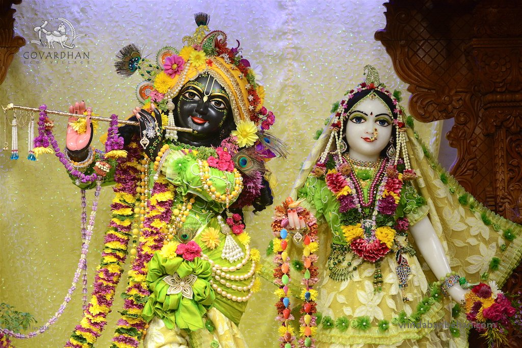 ISKCON GEV (Wada) Deity Darshan 31 Jan 2016 (3)