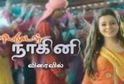 Priyamudan Naagini - 24-02-2017 Episode 41