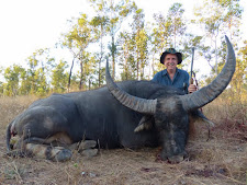 Greg Retschlag from Australia took this big old bull of 100+SCI with his 375H&H falling block. This old bull of 12-14 years was unusual, in that he still had perfect long horn tips. Most older bulls bust off their sharp tips when they are fighting. Greg was fortunate in finding this great trophy bull