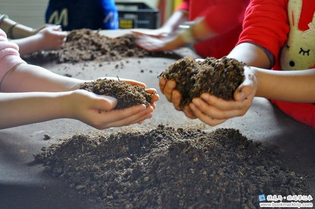 魔菇部落生態休閒農場栽培菇菇DIY體驗