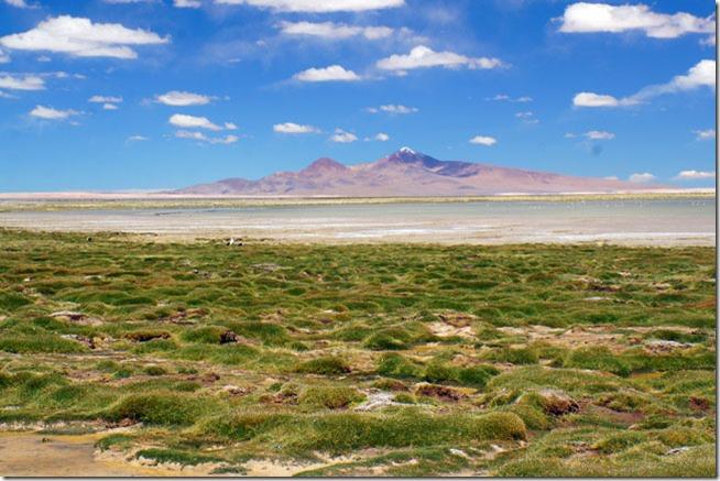 Salar de Tara no Atacama