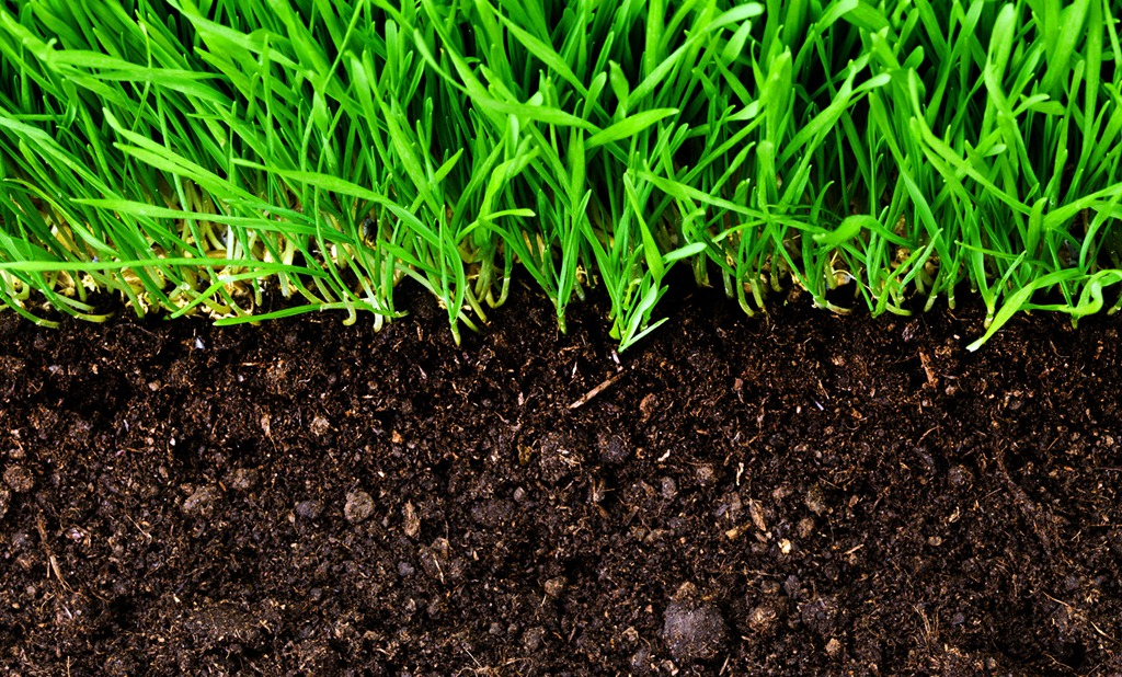 [Agriculture_Soil_Soil_Image%5B4%5D]