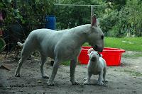 Lola z ciotką Marysią