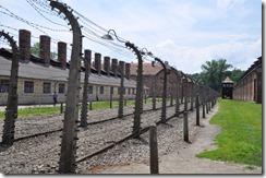 2 Auschwitz cloture electrifiée