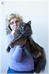 cats-show-25-03-2012-fife-spb-www.coonplanet.ru-016.jpg
