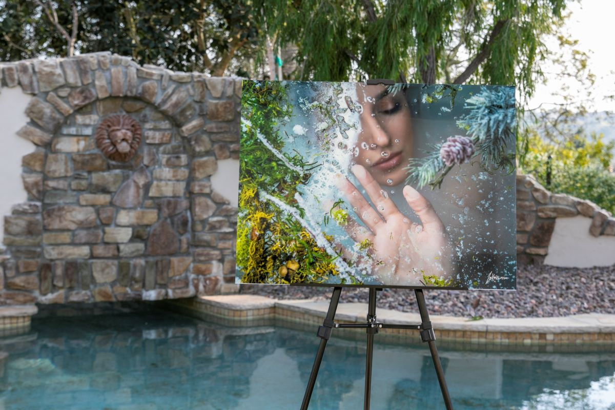 Frozen Beauty by Zim Killgore acrylic facemount next to pool