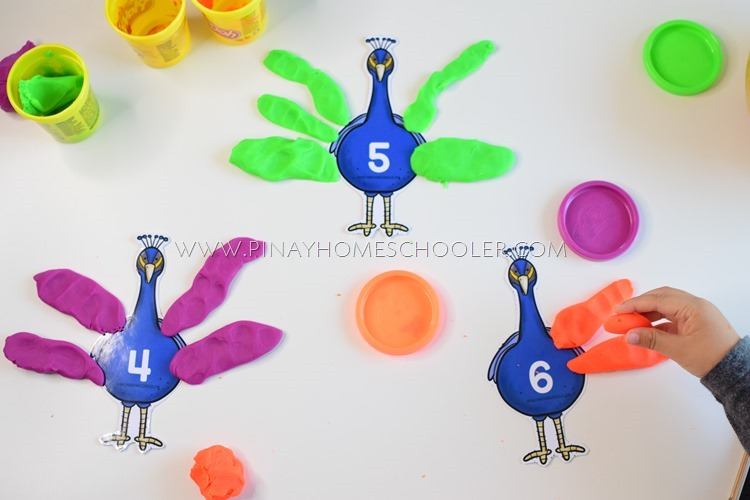 PEACOCK FEATHER COUNTING