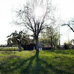 2015.04.23.,Klasztor wiosną,fot.H.L (2).jpg