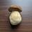 Petar Aleksic's profile photo