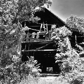 Old Barn by Jeff Sluder - Buildings & Architecture Decaying & Abandoned