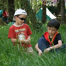 Dan tabornikov, Ilirska Bistrica 2007 - IMG_5849.jpg