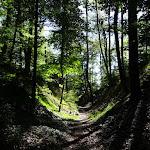 Sentier près de la Croix d'Augas
