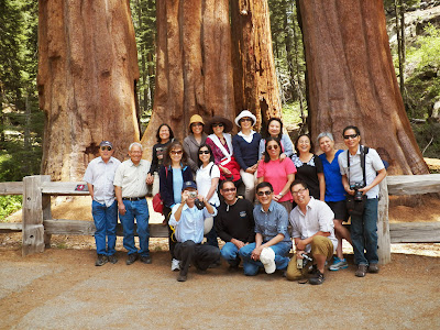 KM San Jose viếng thăm Sequoia và Kings Canyon Natl Park 24/05/2013