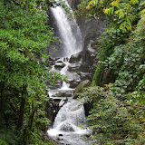 Quebrada Chirajara, 1050 m (Cundinamarca, Colombie), 10 novembre 2015. Photo : J.-M. Gayman