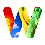 100 PICS Word Search - FREE 1.0.7.0 Apk