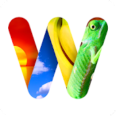 100 PICS Word Search - FREE