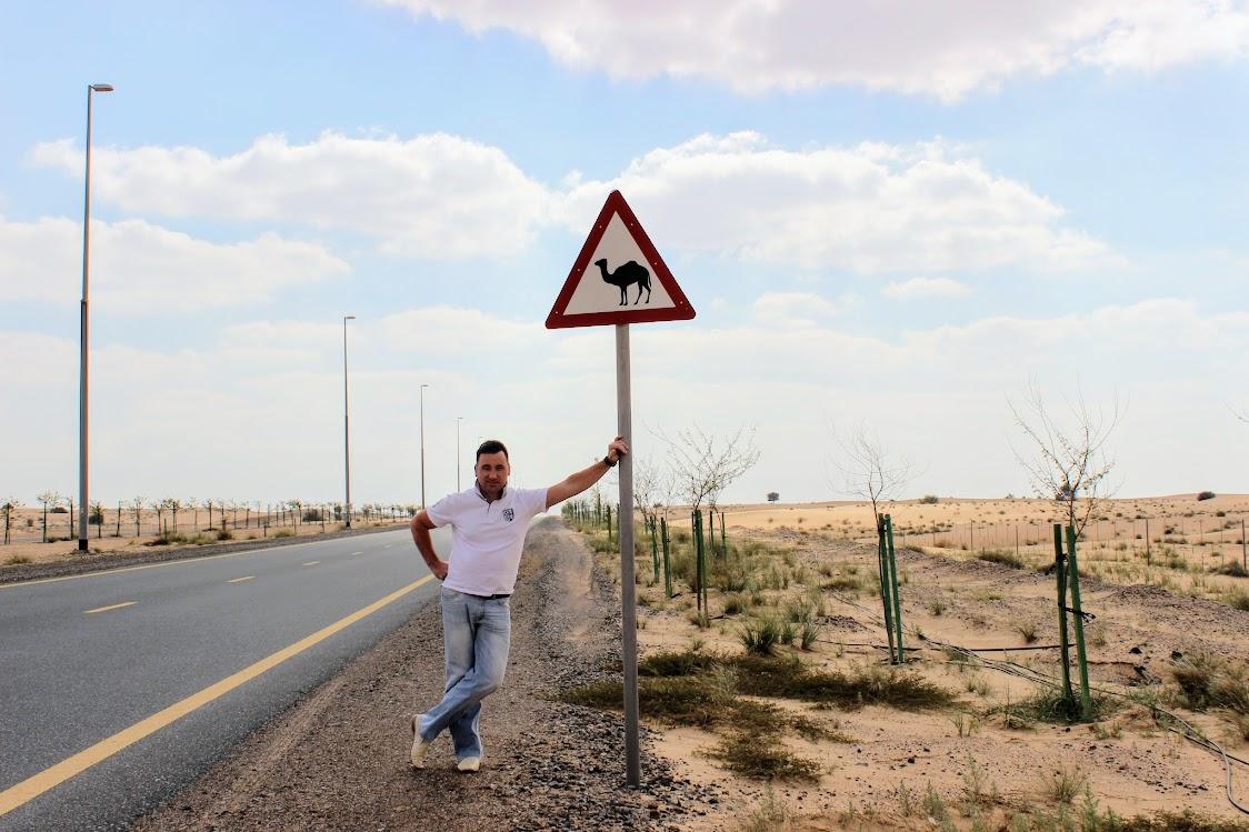 Знак Осторожно Верблюды на дороге