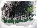 Forest, 9 X 12in gouache, ink, linoleum block print, on paper sold