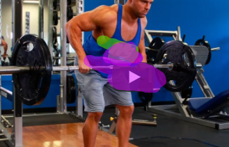 Full-Body Strength Workout row