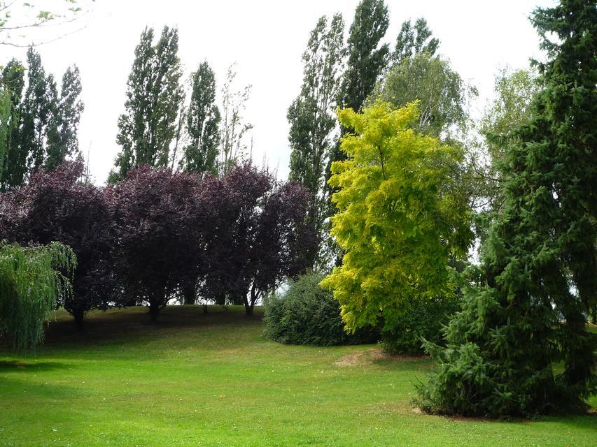 Le parc paysagé - p1000176.jpg