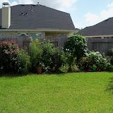 Gardening 2010, Part Three - 101_5029.JPG