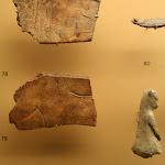 Musée d'archéologie nationale, Magdalénien : n°78-79 gravure figurant au recto une femme couchée entre les pattes d'un renne ; n°80 poisson sculpté en bois de renne, n°82 petit animal sculpté en bois de renne, n°84 rondelle découpée en os gravée, (moulages)