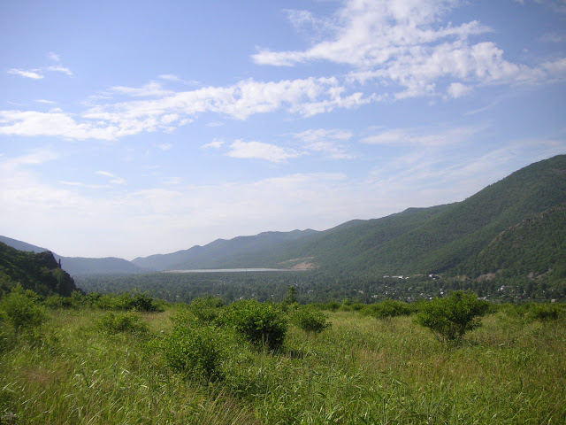 5 km de Dal'negorsk vers Monomakhovo : biotope de Parnassius nomion, 26 juillet 2010. Photo : J. Michel