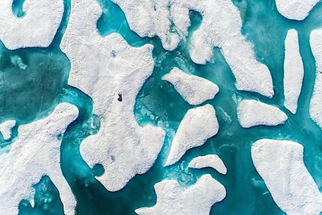 Jurugambar rakam imej menakjubkan di Lautan Artik