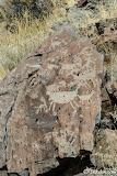 More bighorn sheep petroglyphs.